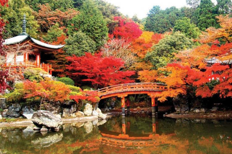 Mùa lá đỏ trên đất nước Nhật Bản